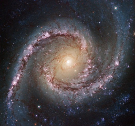 Seyfert Galaxy NGC 1566